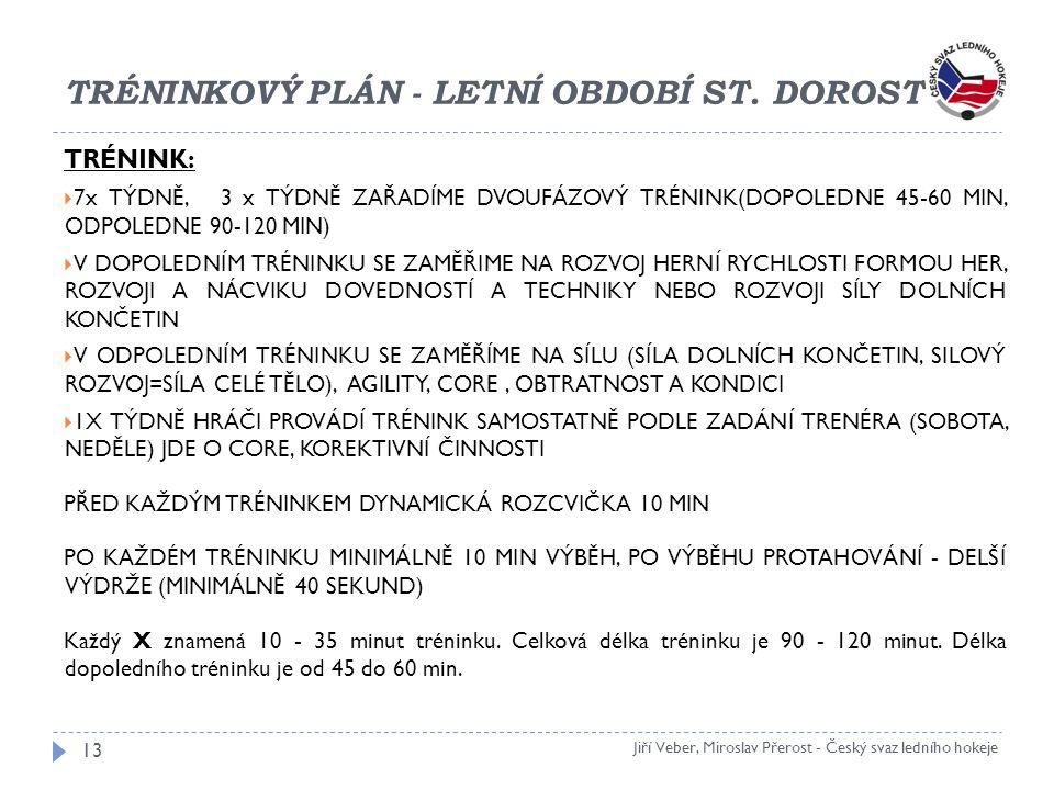 TRÉNINKOVÝ PLÁN - LETNÍ OBDOBÍ ST. DOROST