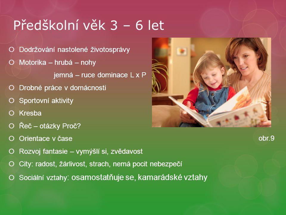 Předškolní věk 3 – 6 let Dodržování nastolené životosprávy