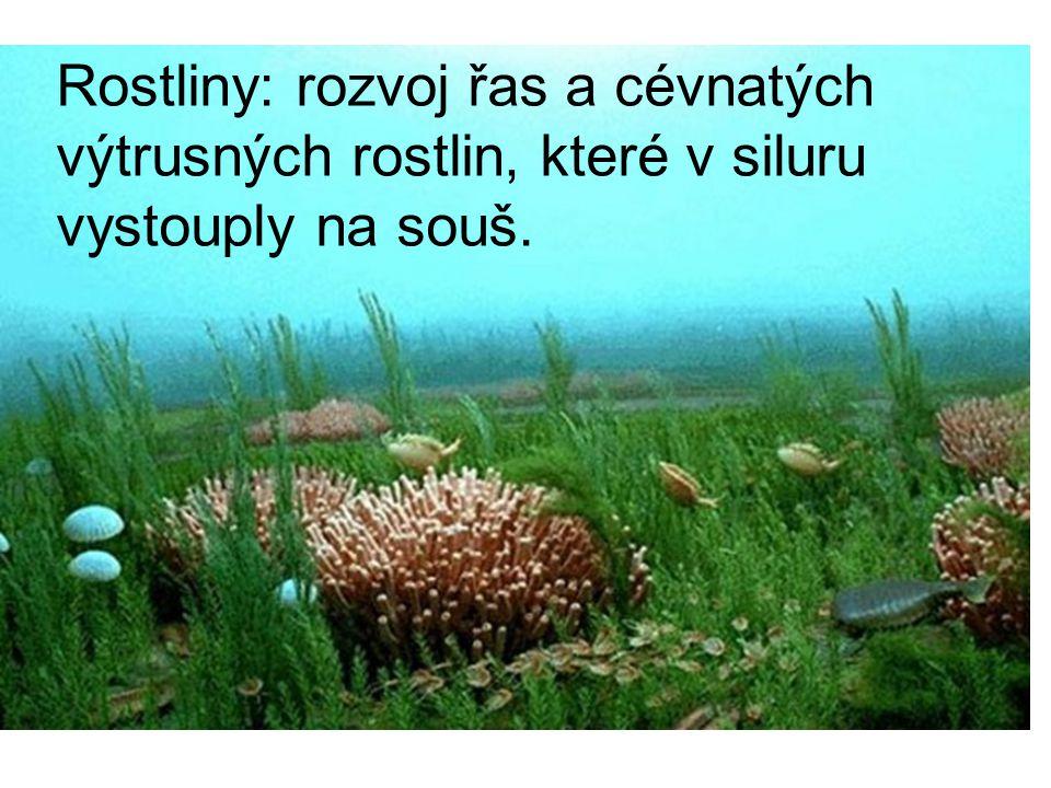 Rostliny: rozvoj řas a cévnatých výtrusných rostlin, které v siluru vystouply na souš.