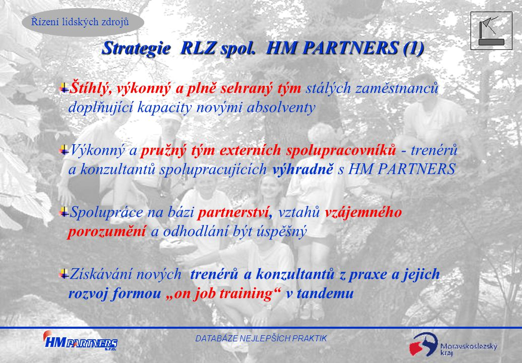 Strategie RLZ spol. HM PARTNERS (1)