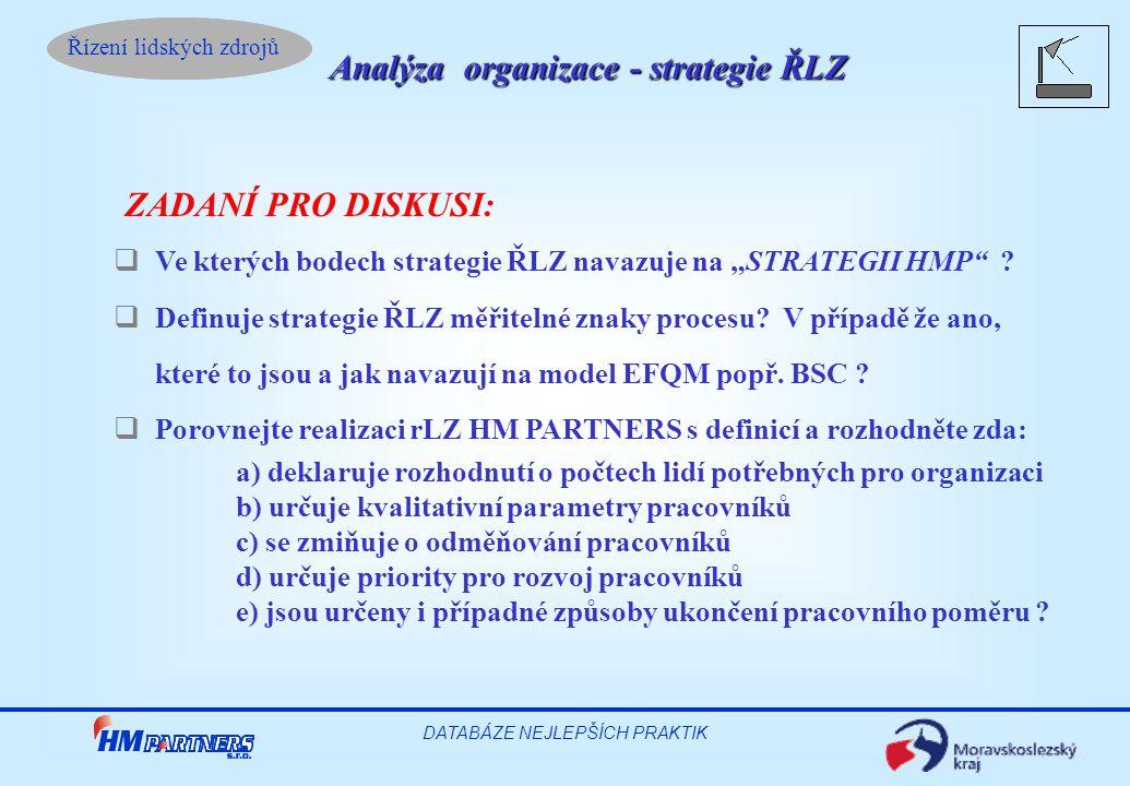 Analýza organizace - strategie ŘLZ