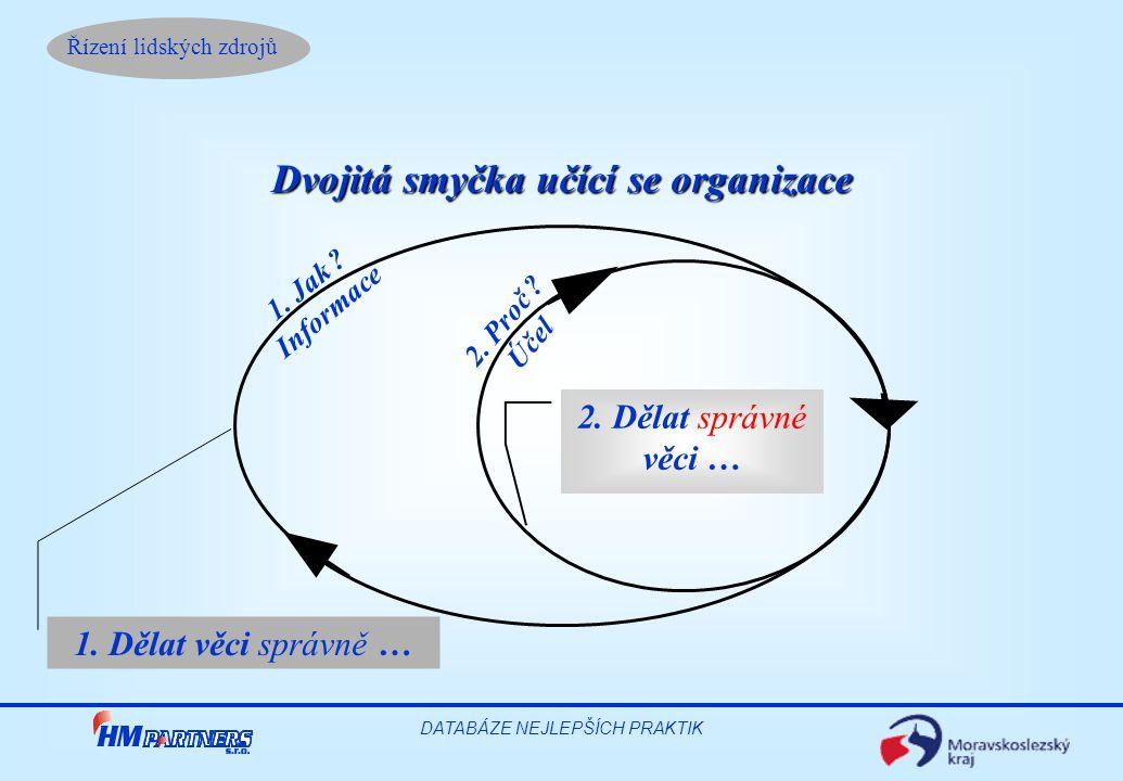 Dvojitá smyčka učící se organizace