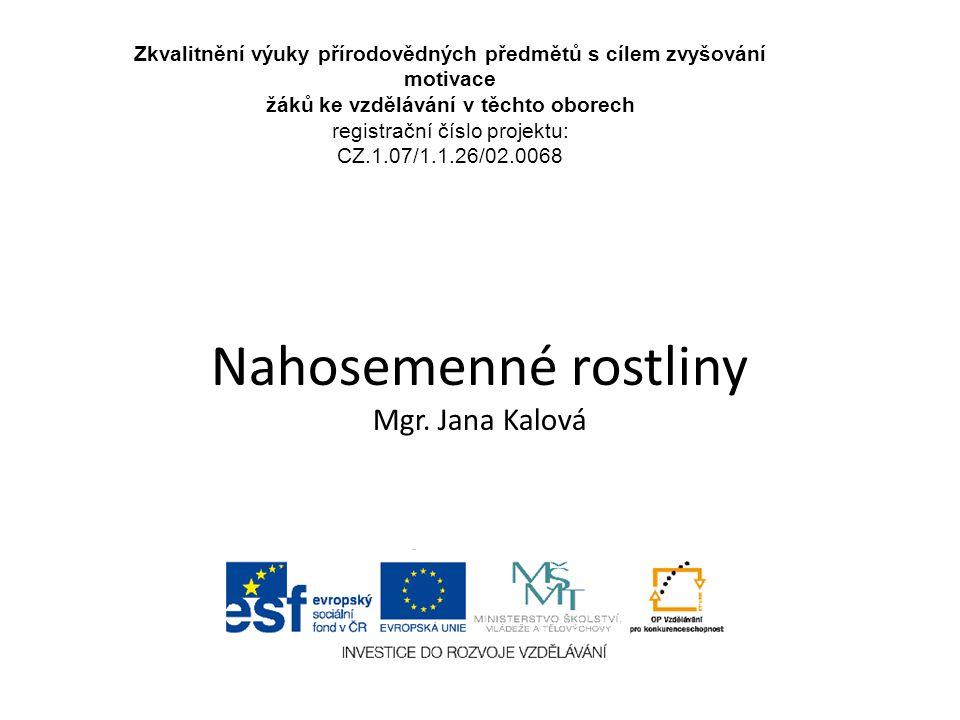 Nahosemenné rostliny Mgr. Jana Kalová