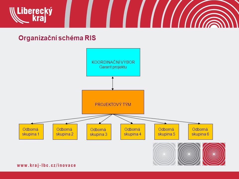Organizační schéma RIS