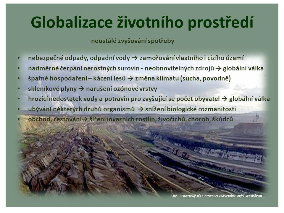 Globalizace životního prostředí