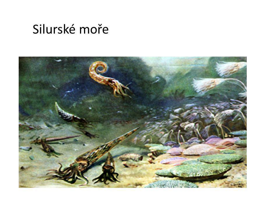 Silurské moře