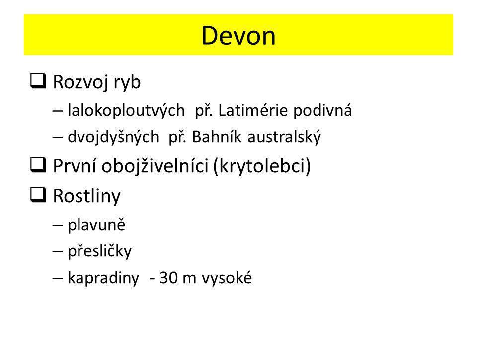 Devon Rozvoj ryb První obojživelníci (krytolebci) Rostliny