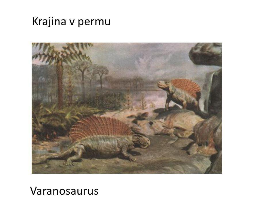 Krajina v permu Varanosaurus