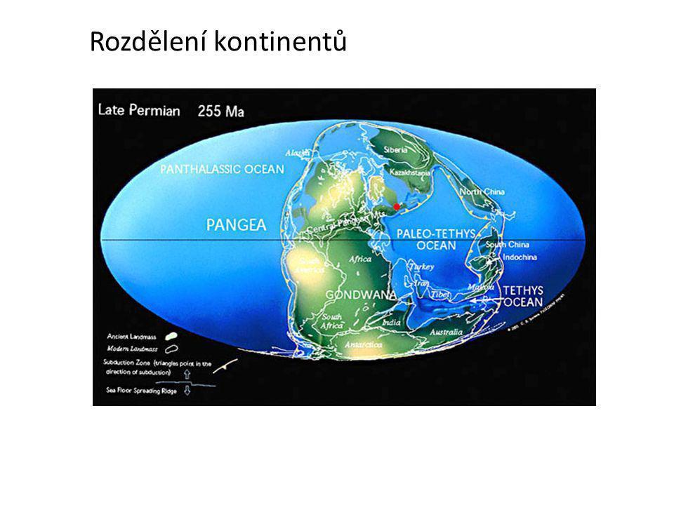 Rozdělení kontinentů