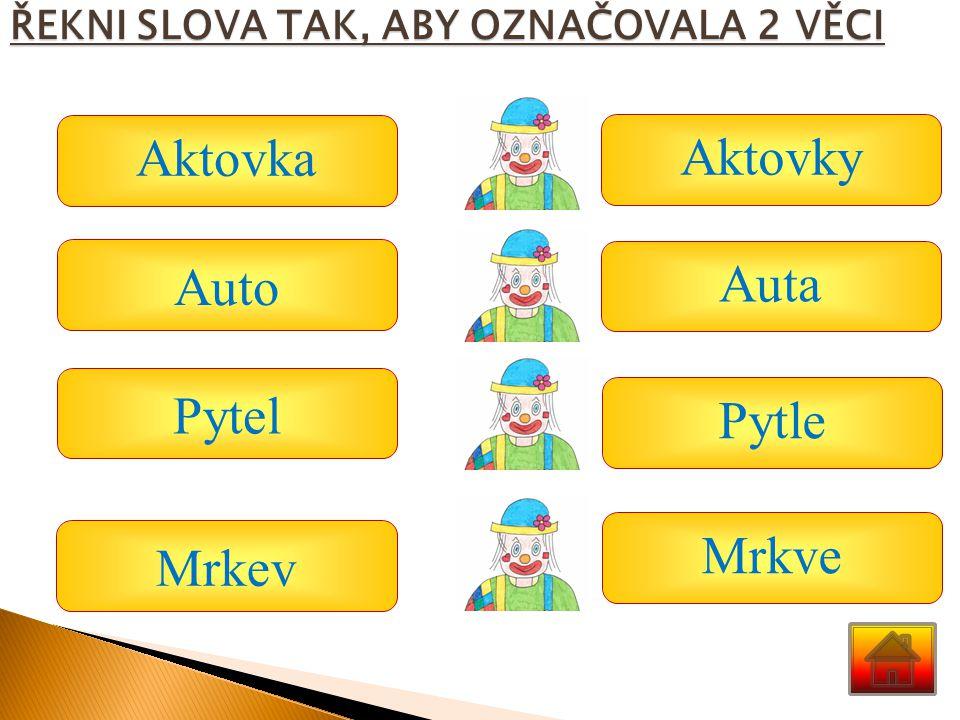 Aktovka Aktovky Auto Auta Pytel Pytle Mrkve Mrkev