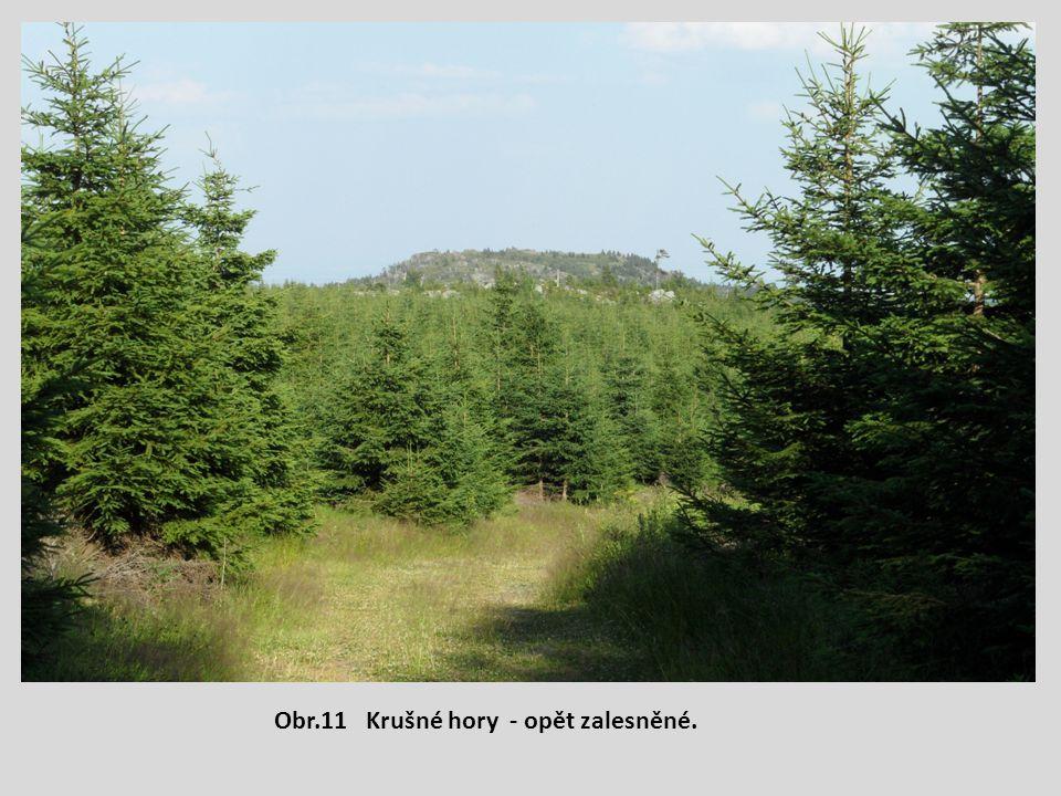 Obr.11 Krušné hory - opět zalesněné.