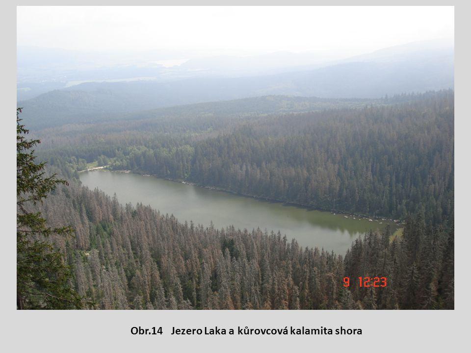 Obr.14 Jezero Laka a kůrovcová kalamita shora
