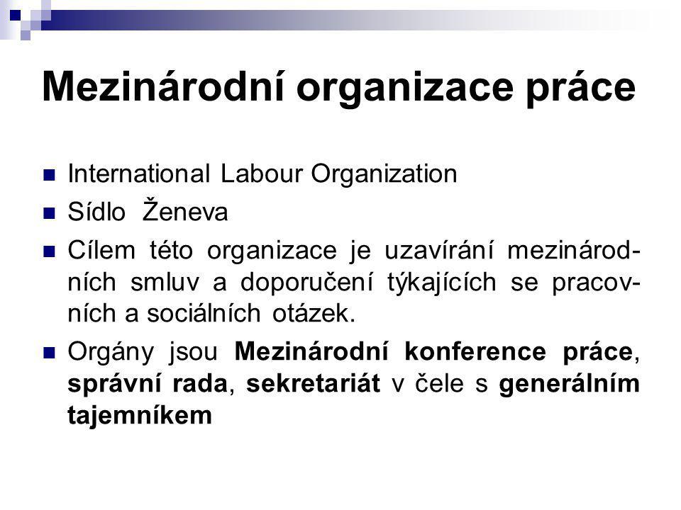 Mezinárodní organizace práce
