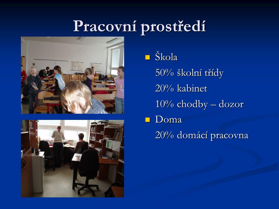 Pracovní prostředí Škola 50% školní třídy 20% kabinet
