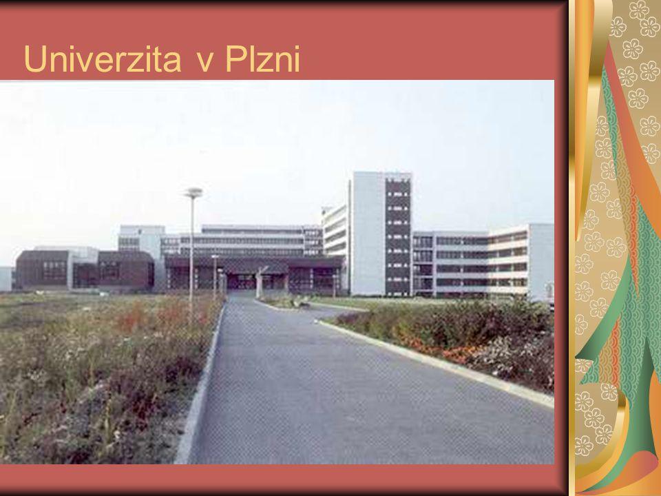 Univerzita v Plzni