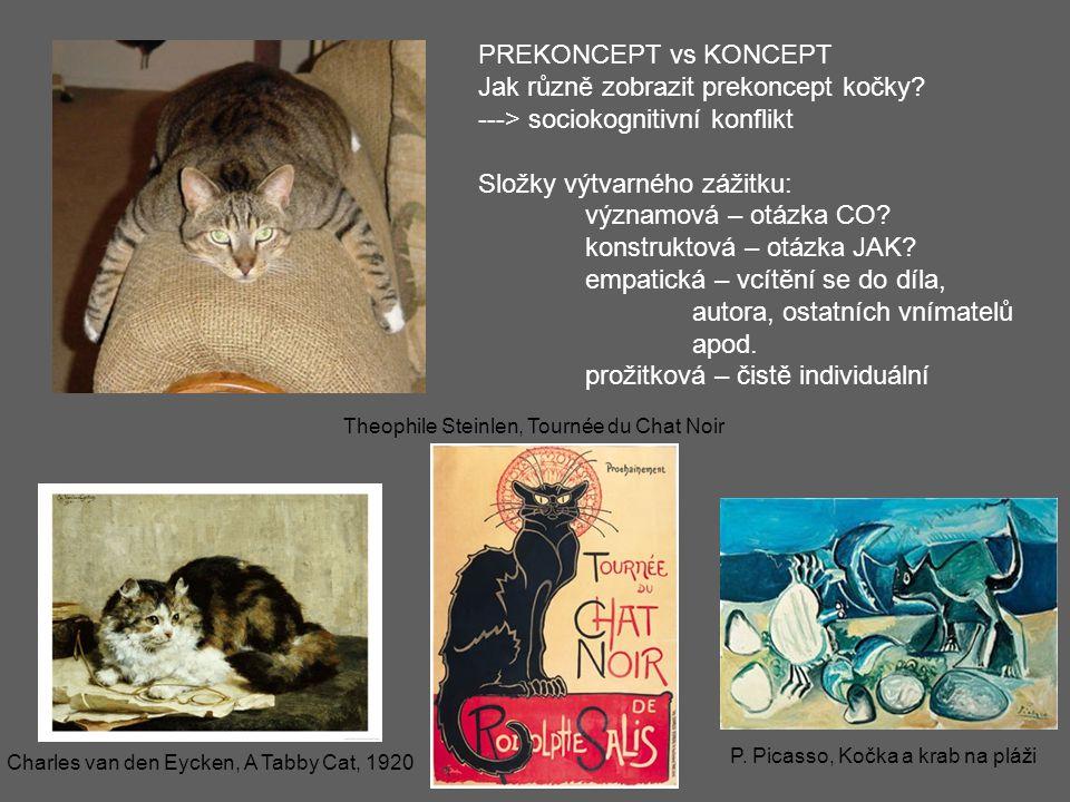 Jak různě zobrazit prekoncept kočky ---> sociokognitivní konflikt