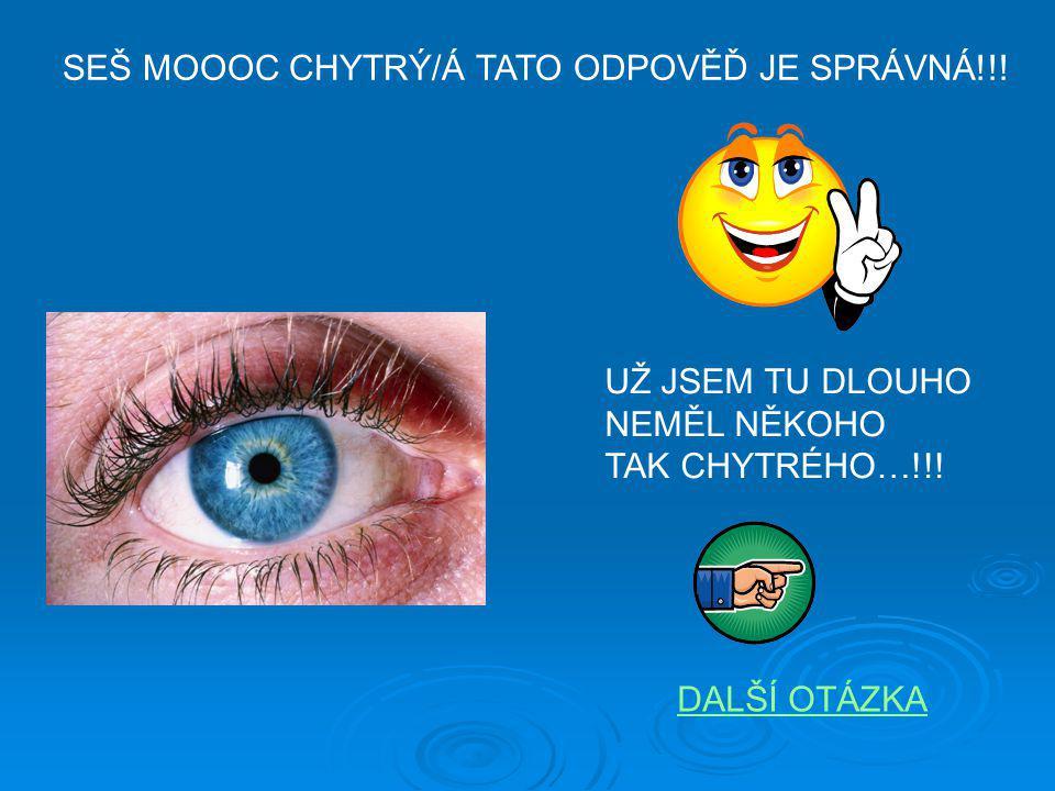 SEŠ MOOOC CHYTRÝ/Á TATO ODPOVĚĎ JE SPRÁVNÁ!!!