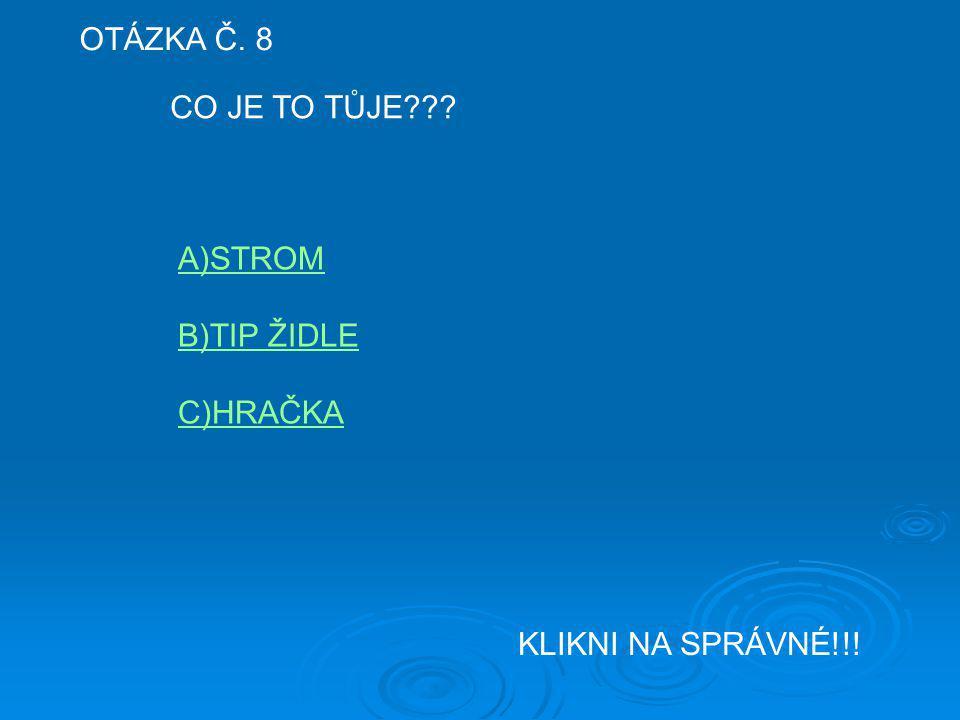 OTÁZKA Č. 8 CO JE TO TŮJE A)STROM B)TIP ŽIDLE C)HRAČKA KLIKNI NA SPRÁVNÉ!!!