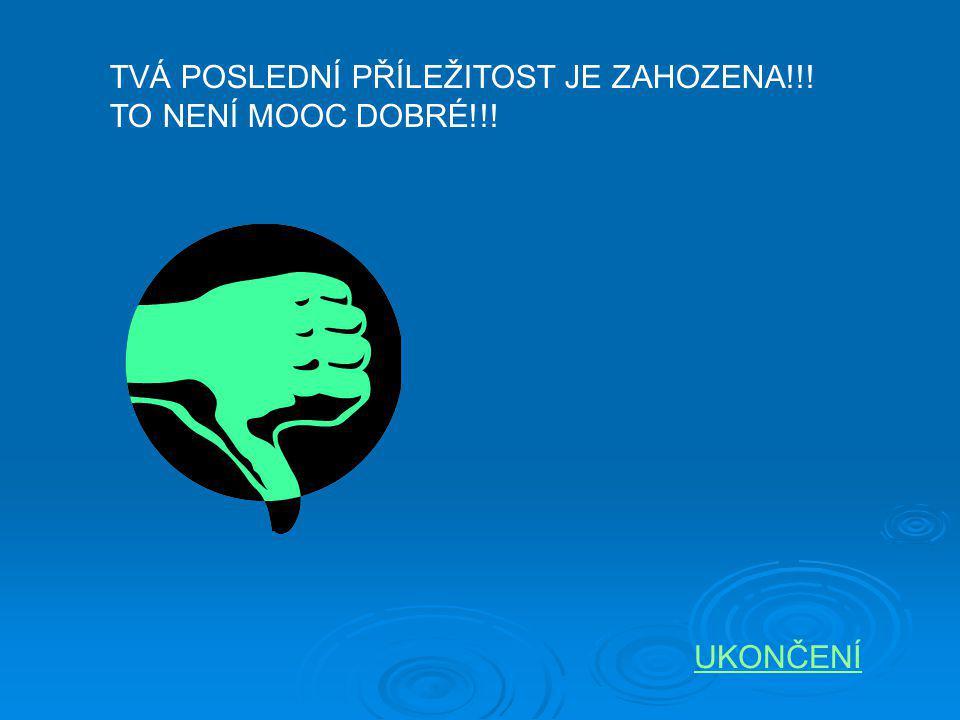 TVÁ POSLEDNÍ PŘÍLEŽITOST JE ZAHOZENA!!!