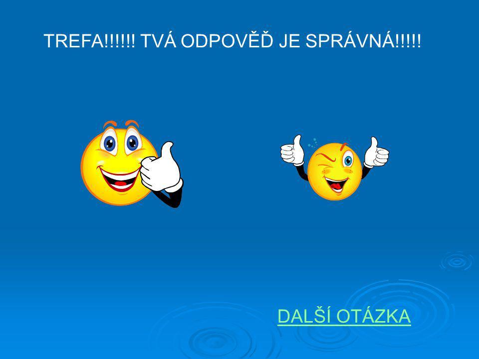 TREFA!!!!!! TVÁ ODPOVĚĎ JE SPRÁVNÁ!!!!!