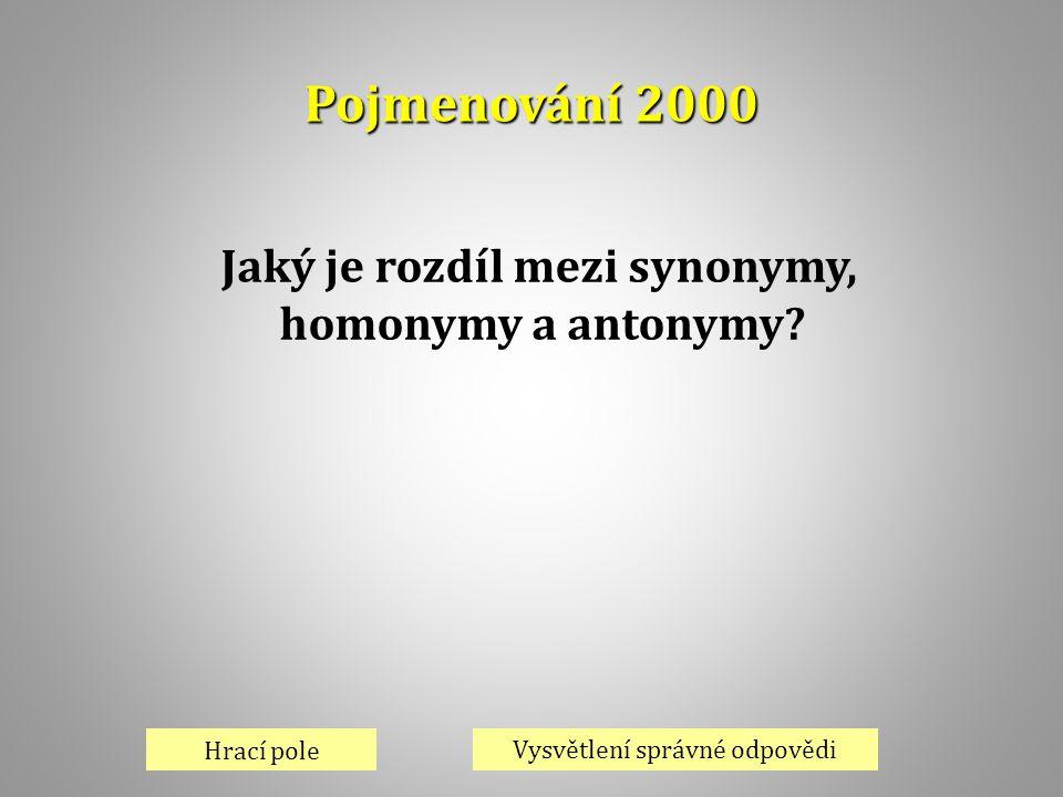 Jaký je rozdíl mezi synonymy,
