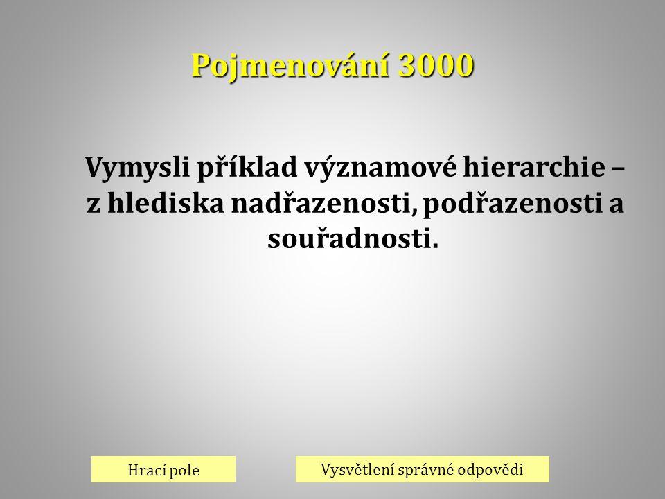 Pojmenování 3000 Vymysli příklad významové hierarchie –