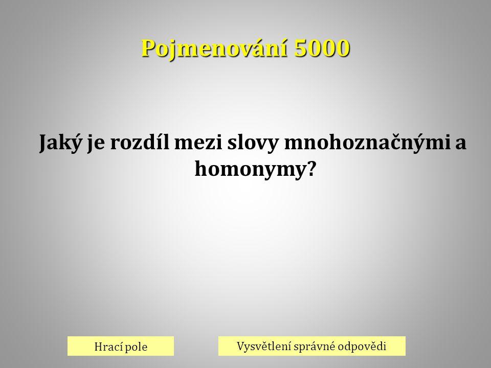 Jaký je rozdíl mezi slovy mnohoznačnými a