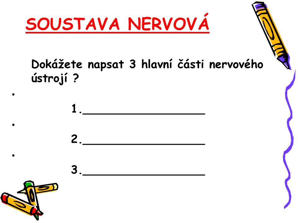 SOUSTAVA NERVOVÁ Dokážete napsat 3 hlavní části nervového ústrojí