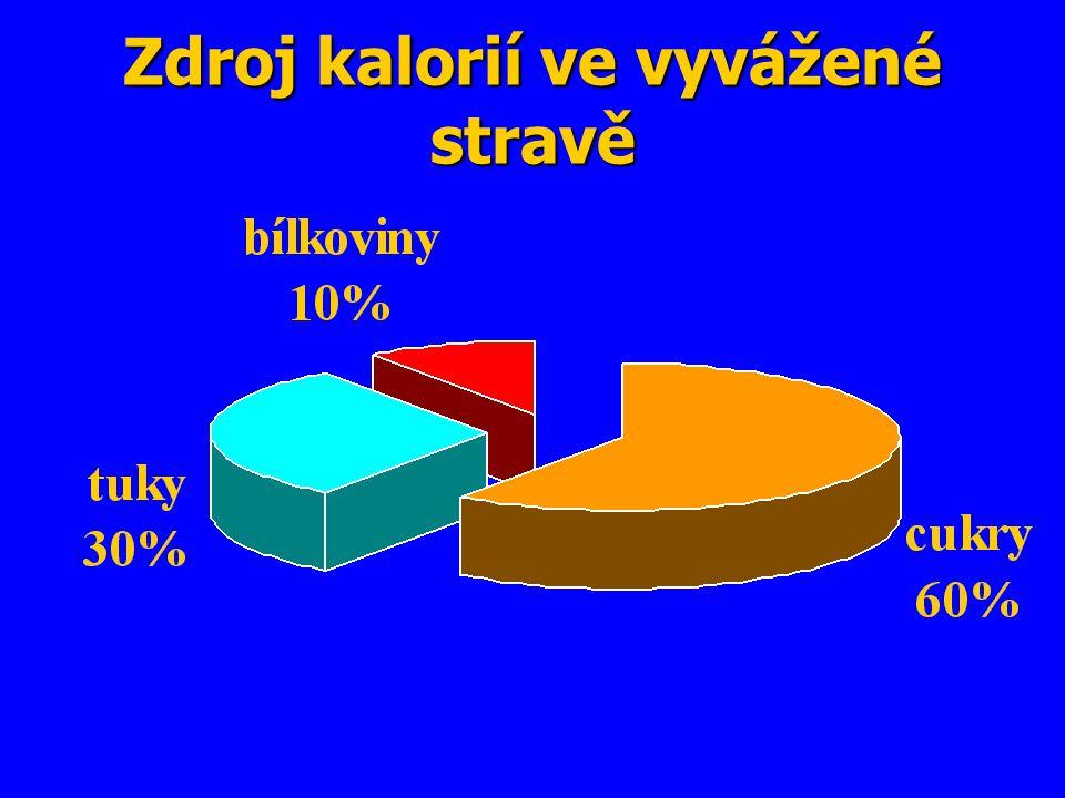 Zdroj kalorií ve vyvážené stravě