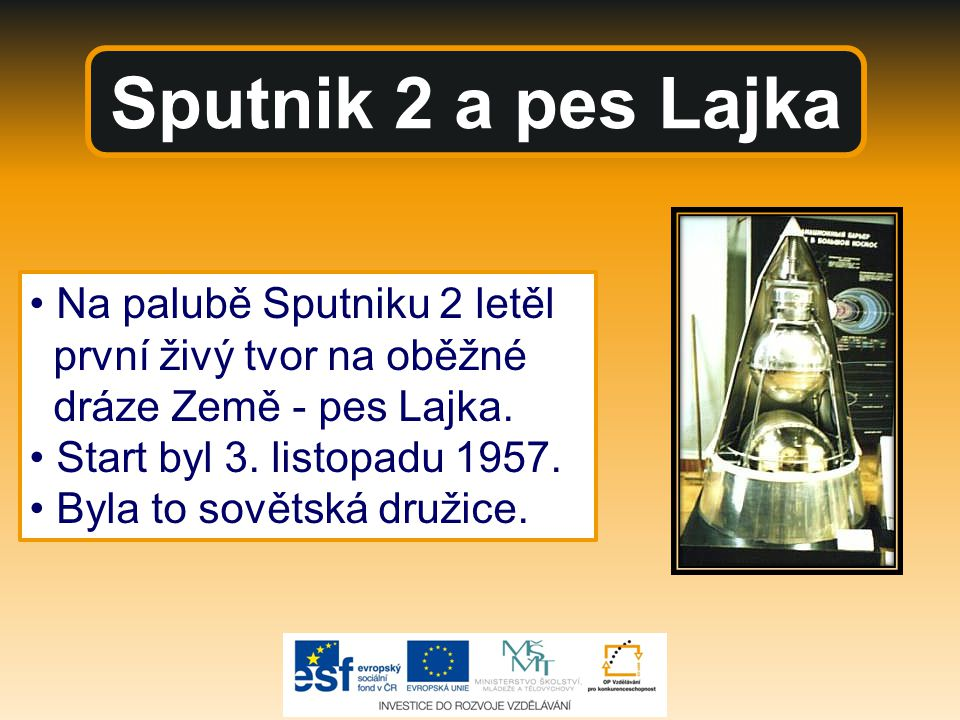 Sputnik 2 a pes Lajka • Na palubě Sputniku 2 letěl