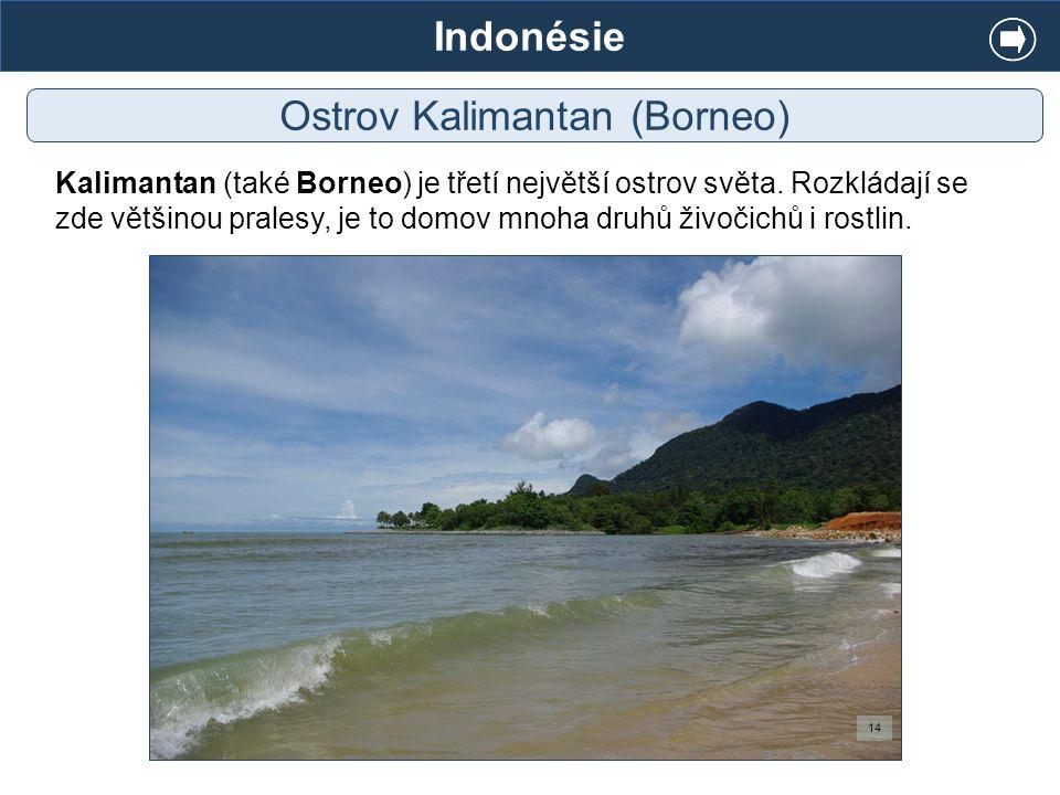Ostrov Kalimantan (Borneo)