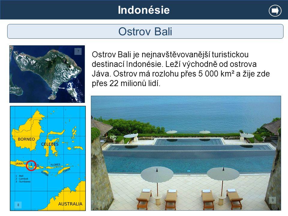 Indonésie Ostrov Bali. 7.