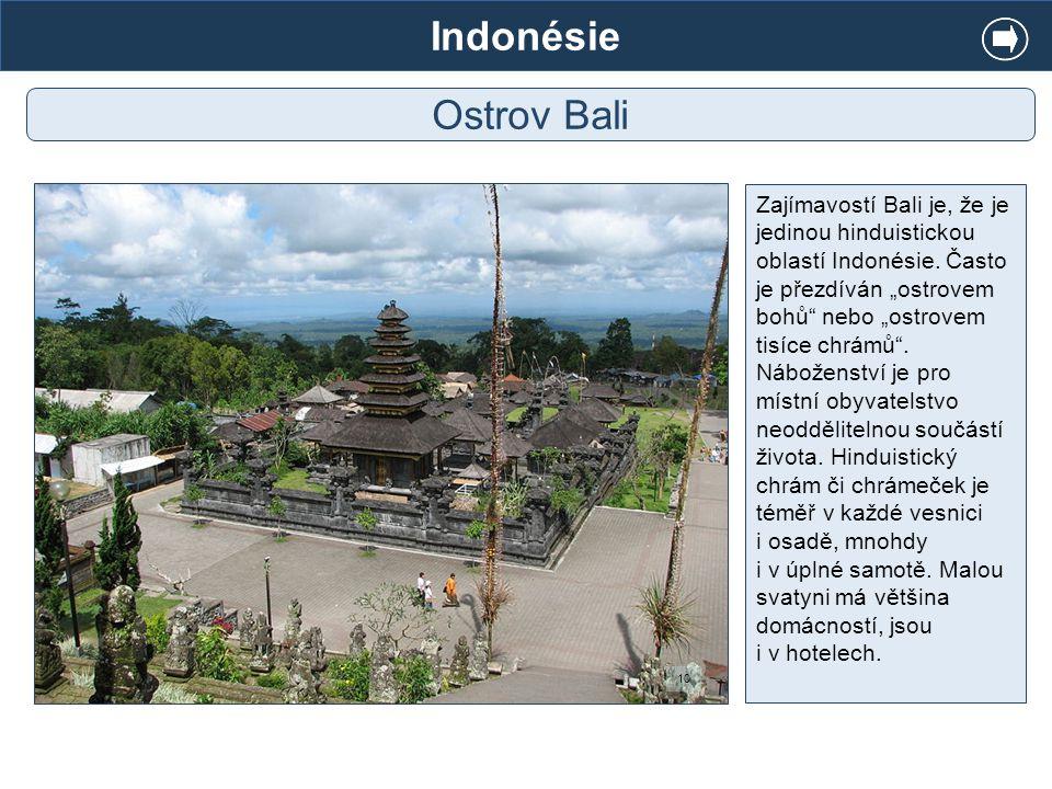 Indonésie Ostrov Bali.
