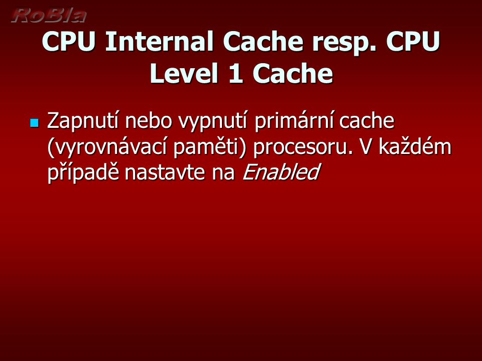 CPU Internal Cache resp. CPU Level 1 Cache