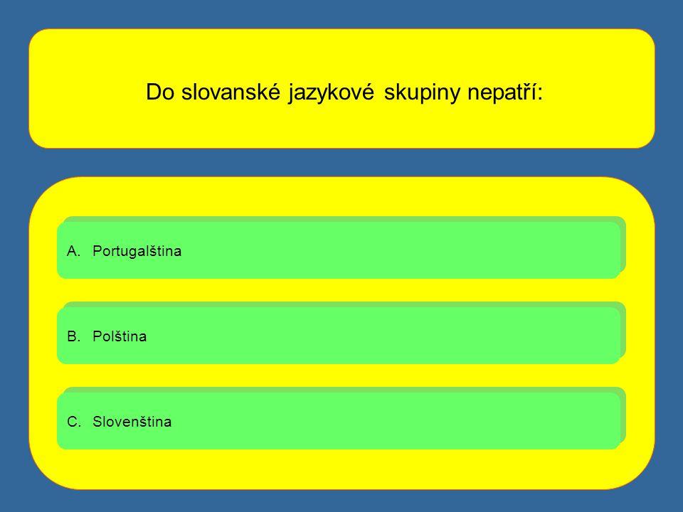 Do slovanské jazykové skupiny nepatří: