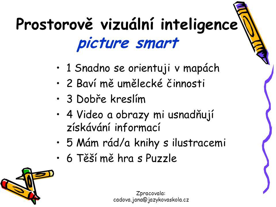 Prostorově vizuální inteligence picture smart