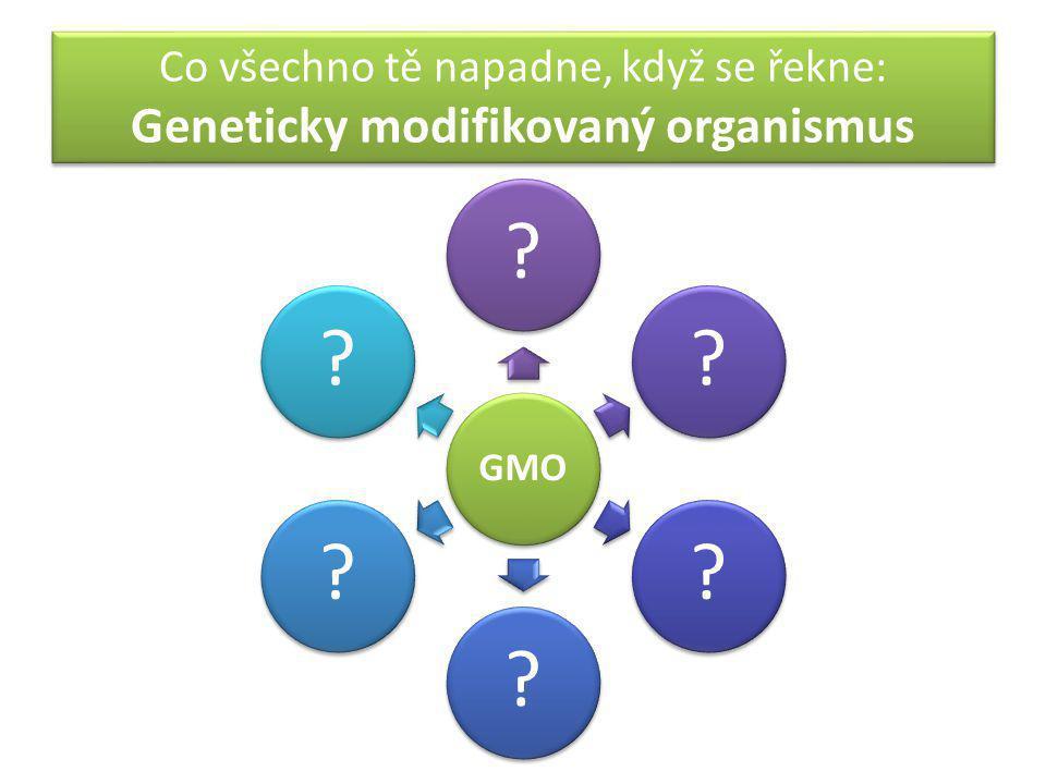 Co všechno tě napadne, když se řekne: Geneticky modifikovaný organismus