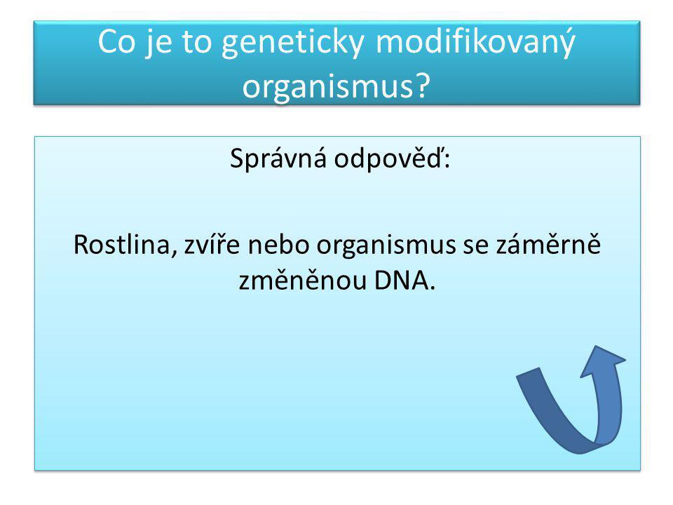 Co je to geneticky modifikovaný organismus