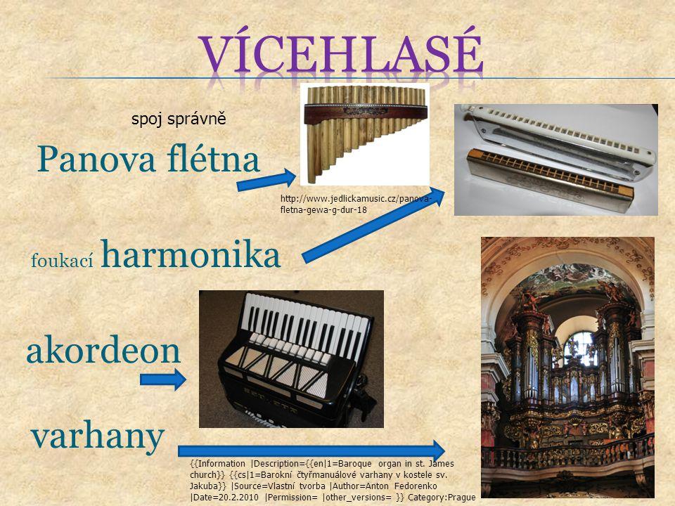 vícehlasé Panova flétna akordeon varhany foukací harmonika