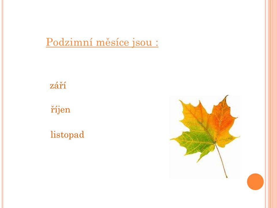Podzimní měsíce jsou : září říjen listopad