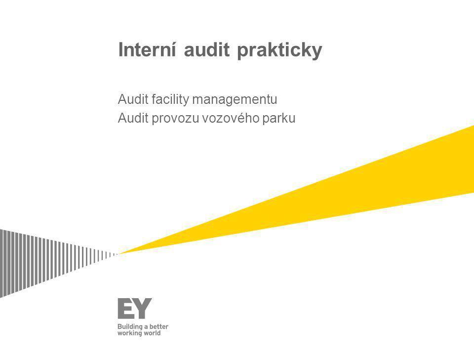 Interní audit prakticky