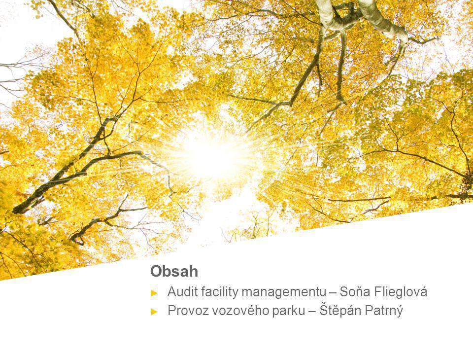 Obsah Audit facility managementu – Soňa Flieglová