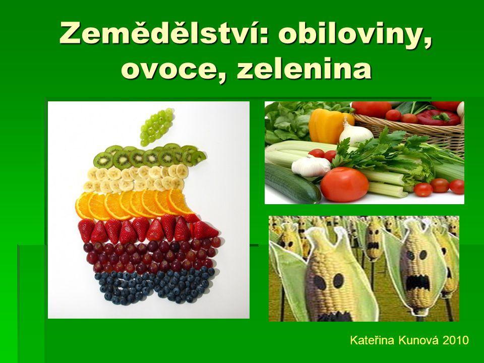 Zemědělství: obiloviny, ovoce, zelenina