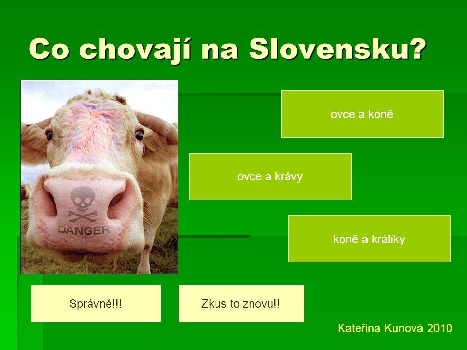 Co chovají na Slovensku