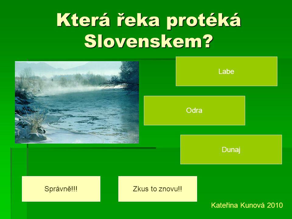 Která řeka protéká Slovenskem
