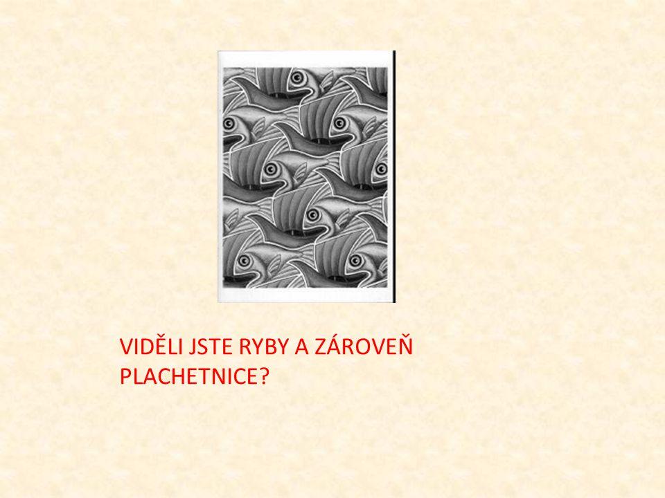 VIDĚLI JSTE RYBY A ZÁROVEŇ PLACHETNICE