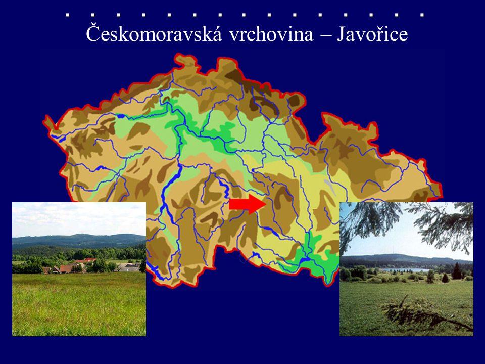 Českomoravská vrchovina – Javořice
