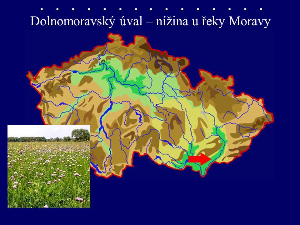 Dolnomoravský úval – nížina u řeky Moravy