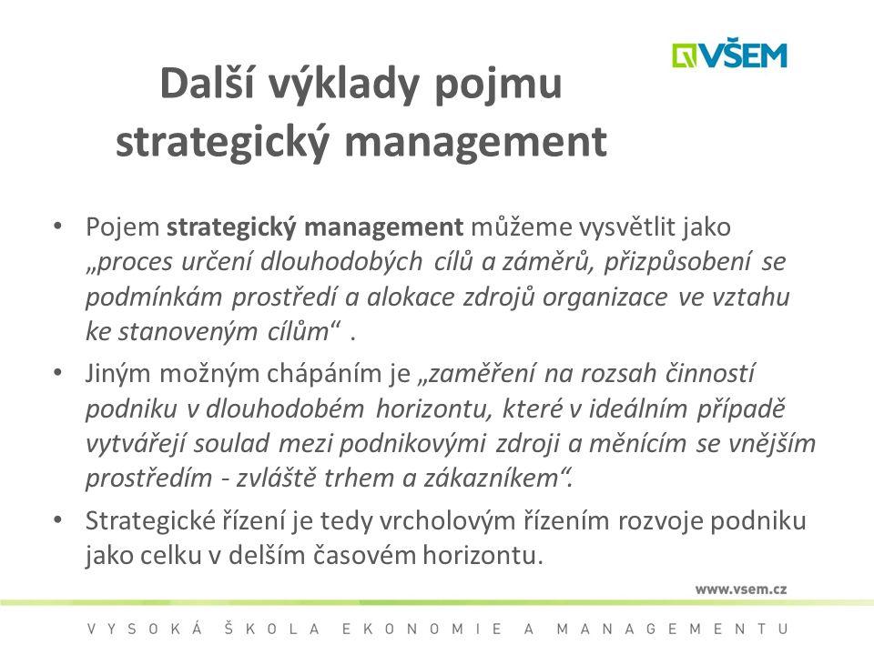 Další výklady pojmu strategický management