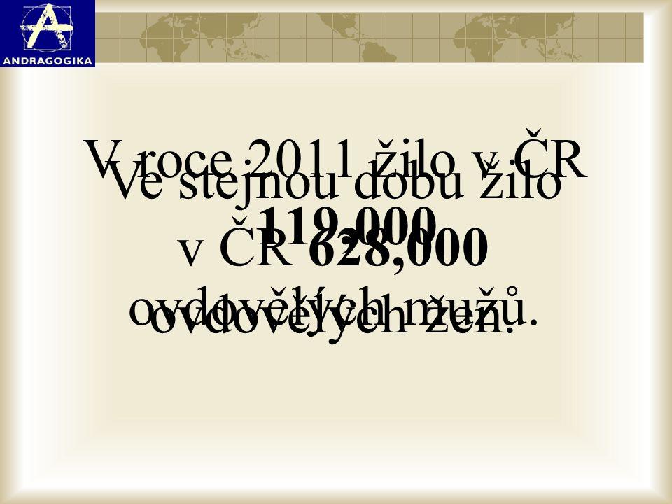 V roce 2011 žilo v ČR 119,000 ovdovělých mužů.